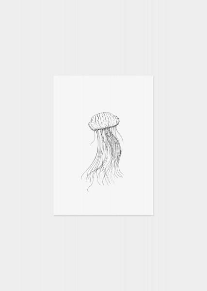 Print Postkarte Qualle schwarz weiß
