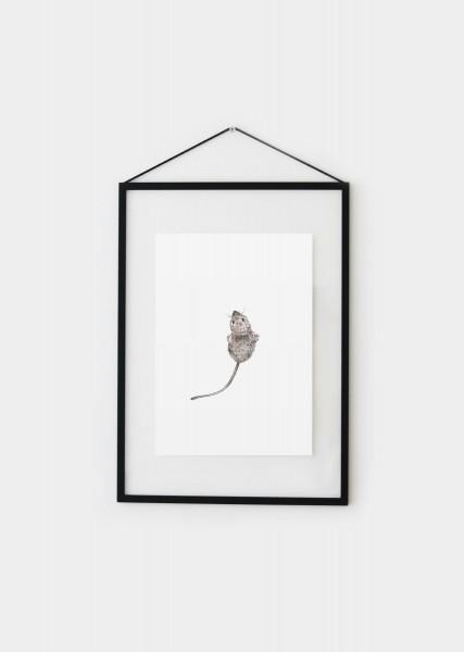 Postkarte Maus