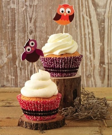 Cupcake Set Eulen 36-teilig