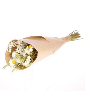 Trockenblumen-Strauss- Natur