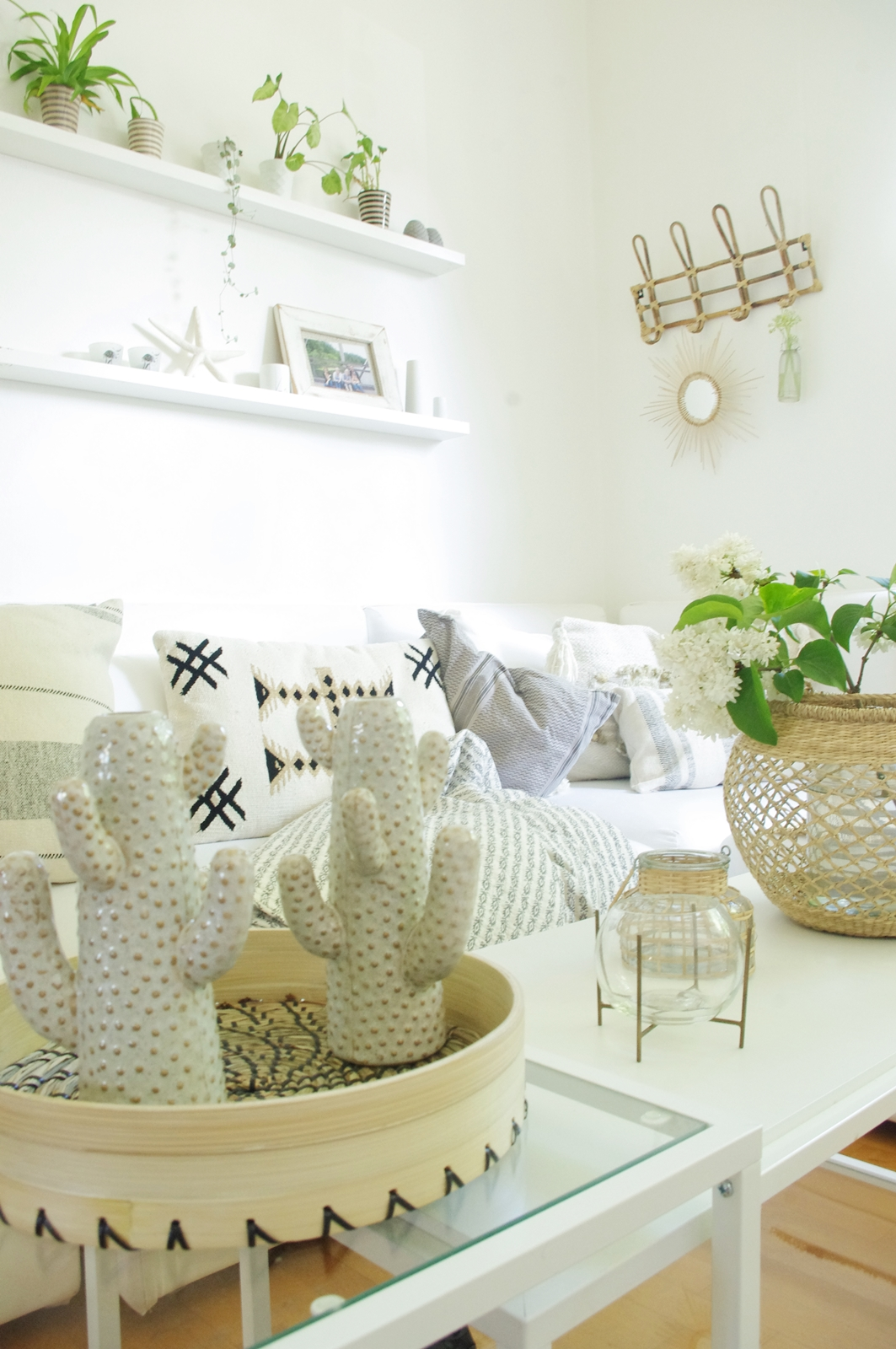 Wohnzimmer-Neue-Blumenvase-Kaktus